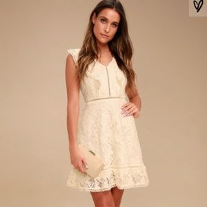 NWT BB Dakota Lace Collar Detail MIni Dress